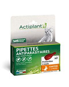 Eco Spot kitten +2 maanden - 2 pipetten