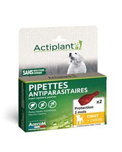 Eco Spot puppy +2 maanden - 2 pipetten